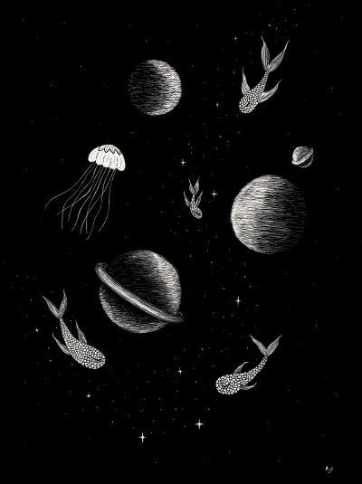 Les poissons-lunes